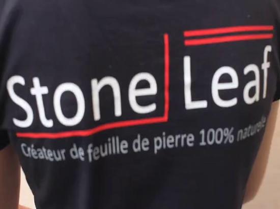 Classique de StoneLeaf