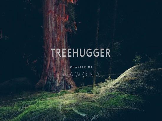 Chapitre 01 de Treehugger : Énigme de WAWONA de festin de laser de guimauve
