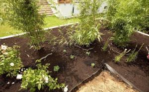 Plantations et accessoires
