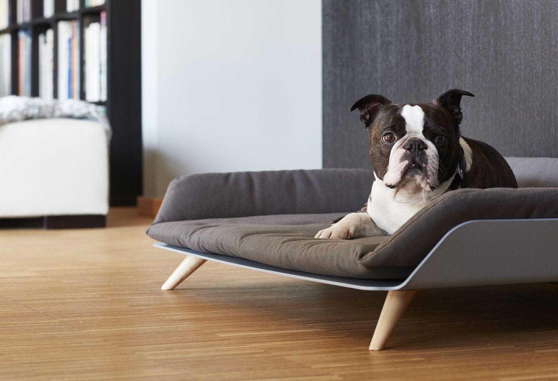 Lit Pour Chien Palette lit pour chien - letto - miacara