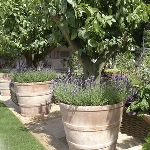 pot de jardin en terracotta / conique
