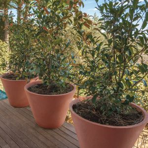 pot de jardin en béton / rond / résidentiel