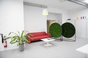 tableau végétal stabilisé / en mousse boule / feuillages denses / en lichen