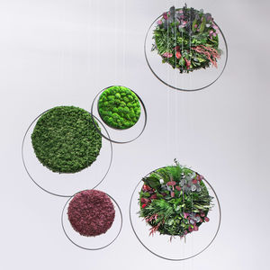 tableau végétal stabilisé / en mousse boule / feuillages denses / d'intérieur