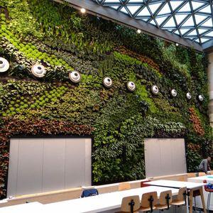 mur végétal stabilisé / naturel / d'intérieur / de jardin