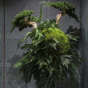 plante ornementale stabilisée