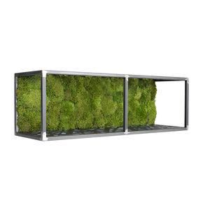 cadre végétal stabilisé / en mousse boule / d'intérieur / avec cadre en métal