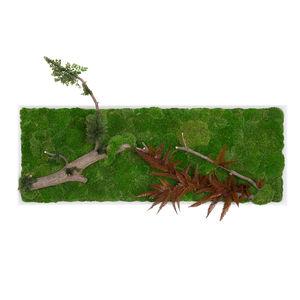 tableau végétal stabilisé