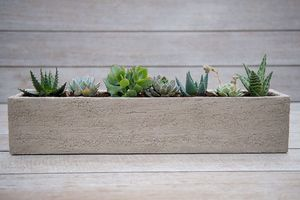 jardinière en terracotta / rectangulaire / contemporaine / pour espace public