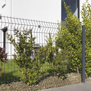clôture en treillis soudé