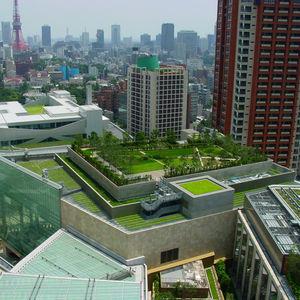 système pour toiture végétalisée extensive