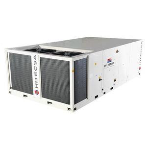 unité de climatisation au sol / de toiture / professionnelle / industrielle