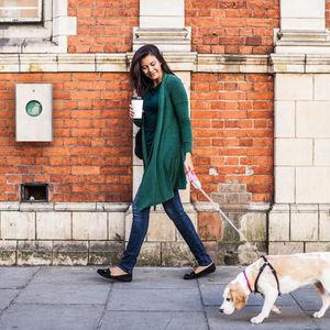 distributeur de sacs pour excréments canins pour espace public