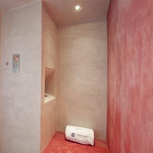douche à vapeur / en acier inoxydable / rectangulaire / avec porte battante
