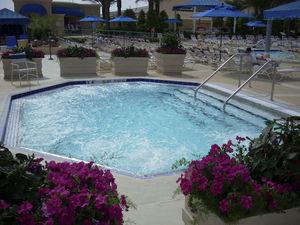 piscine-spa sur mesure / professionnelle