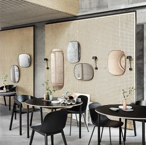 miroir mural / classique / rectangulaire / en acier à revêtement par poudre