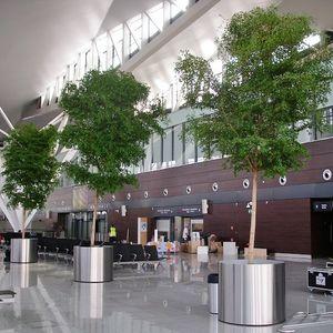 jardin d'intérieur pour terminal d'aéroport