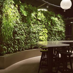 jardin vertical en végétaux vivants / naturel / d'intérieur / bioclimatique