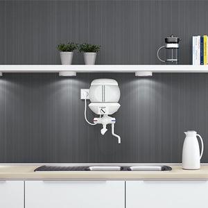 chaudière électrique / murale / résidentielle / avec chauffe-eau