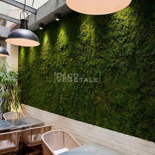 mur végétal stabilisé / en panneau modulaire / naturel / en mousse boule