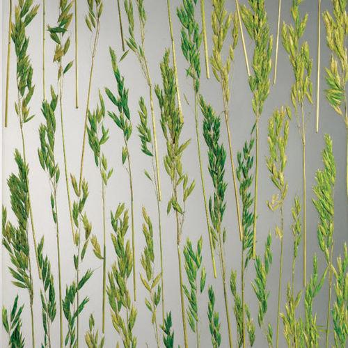 panneau décoratif acrylique / pour agencement intérieur / brillant / avec insert en plante naturelle