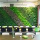 mur végétal stabilisé / en végétaux vivants / naturel / d'intérieur