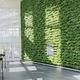 mur végétal stabilisé / en végétaux vivants / en panneau modulaire / naturel