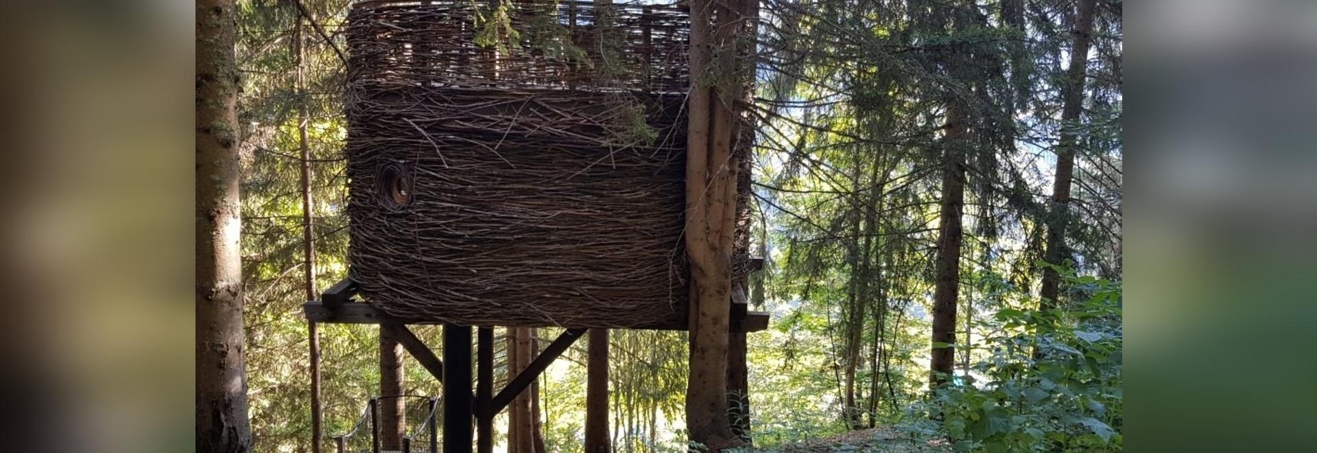 Le Nid, une des luxueuses cabanes dans les arbres de Nicolas Boisrame, fondateur d'Entre Terre et Ciel.