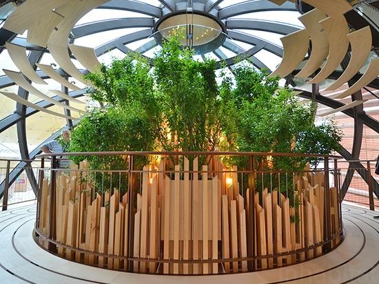 Le pavillon modulaire de l'Azerbaïdjan du Milan Expo est enveloppé en auvents onduleux de bois de construction enfermant différentes biosphères multiples    Lu davantage : Le pavillon modulaire de ...