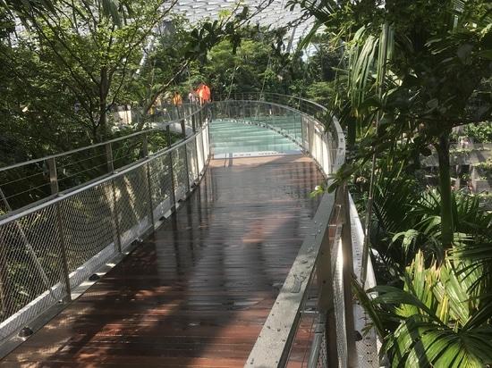 Allée piétonnière à l'aéroport de Jewel Changi