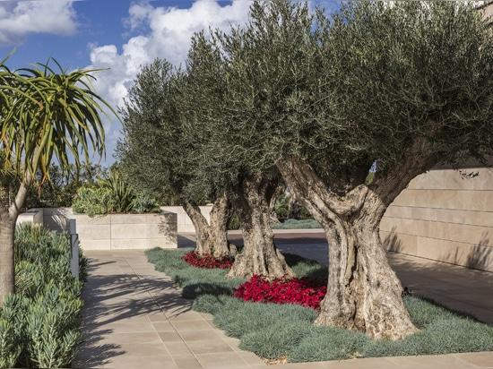 Villa Malta : un projet qui puise son inspiration de l'horizon qui s'étend sur la mer