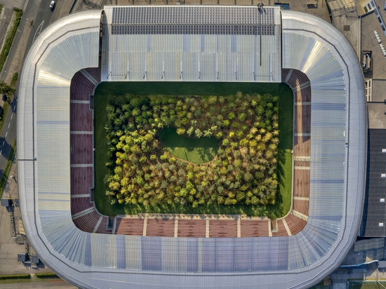Le stade autrichien se transforme en forêt géante