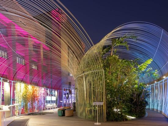 Pavillon de la forêt éternelle pour la Bangkok Design Week 2020 / Plural designs company limited