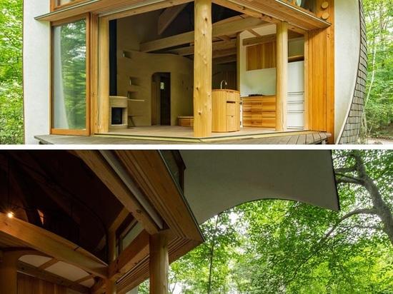 Une petite maison en forme de coquillage est entourée d'une forêt japonaise
