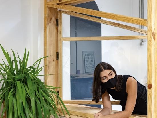 Des étagères en pin et en verre entourent un bureau en Équateur