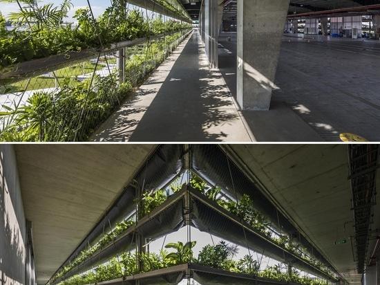 Des rangées de plantes bordent l'extérieur de ce bâtiment de l'usine