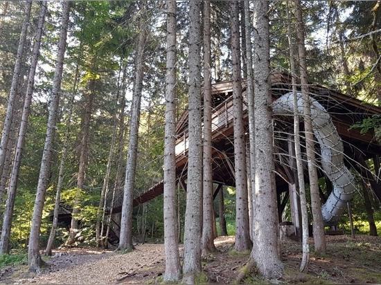 La Cabane du Ruisseau, la cabane dans les arbres idéale pour les familles avec enfants. Conçue et construite par Nicolas Boisrame, fondateur d'Entre Terre et Ciel.