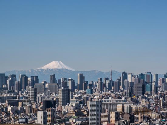 Vue de la ville de Tokyo, du bâtiment du centre-ville de Tokyo et de la tour de Tokyo, point de repère avec la montagne Fuji par temps clair. La métropole de Tokyo est la capitale du Japon et l'une...