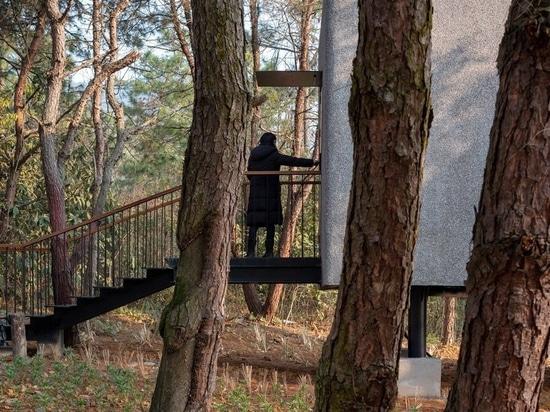 """ZJJZ construit une maison d'hôtes """"champignon"""" avec un toit en forme de cône dans la forêt de Jiangxi, en Chine"""