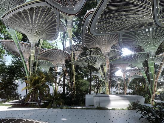 """Des auvents en feuilles de palmier forment un refuge extérieur """"oasys"""" dans le tissu urbain d'Abu Dhabi"""