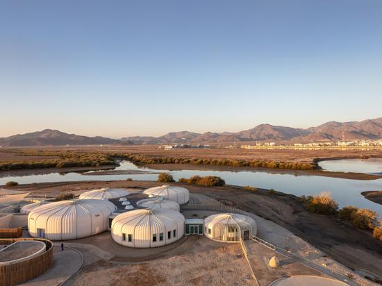 Hopkins Architects achève la construction d'un sanctuaire pour tortues et animaux sauvages aux Émirats arabes unis