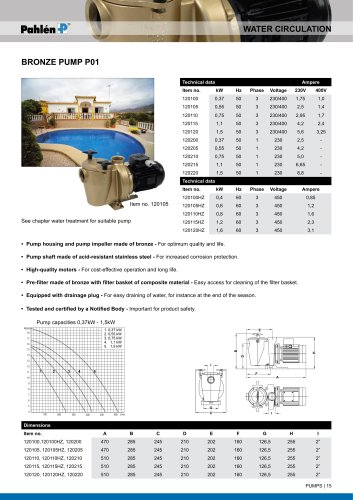 Bronze pump P01