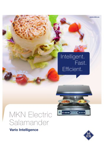 MKN Electric  Salamander