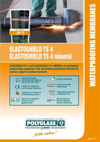 ELASTOSHIELD TS 4 / ELASTOSHIELD TS 4 mineral
