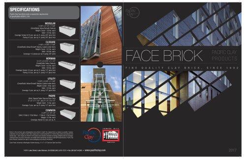 Face Brick