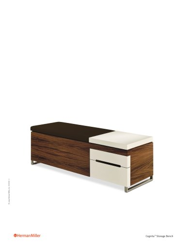 Cognita Storage Bench Product Sheet