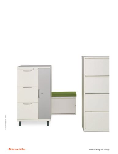 Meridian Filing and Storage brochure
