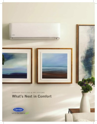 2019 Carrier Ductless