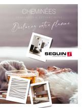 SEGUIN - Cheminées