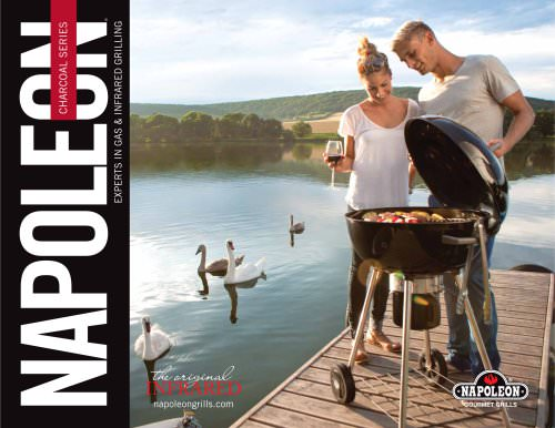 PRO22K Professional Charcoal Kettle Grill